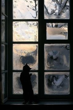 On the warm side of the icy window.