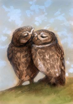 'Owls in Love' by Christina Siravo