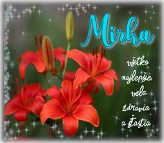 8.9 Mirka September, Neon Signs, Birthday, Plants, Blog, Candles, Birthdays, Blogging, Plant