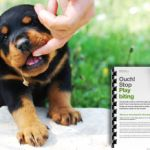 Stop your puppy play biting - with behaviourist and dog trainer Karen Wild