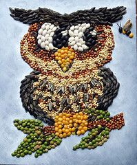 Mosaic Owl by Linda Fohn    MOM & I MADE A ROOSTER USING SEEDS GLUED ONTO A WOODEN CUT OUT SHAPE.  IT WAS REALLY PRETTEY.   JR