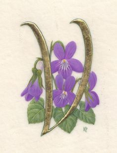 V for Violets:  gold leaf and watercolor on vellum, by Kathy Pickles