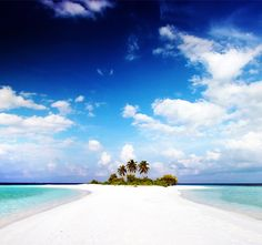 Sunny day, white sandy beach, clear blue water.. Blissss...! -- Paradise Island, Bahamas