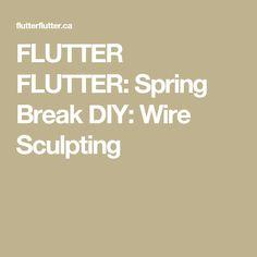 FLUTTER FLUTTER:  Spring Break DIY: Wire Sculpting