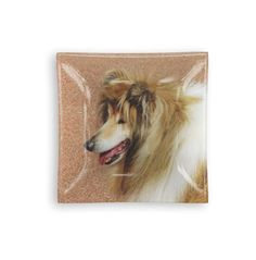 Rough Collie Glass Tray: What a beautiful product! Our solid glass trays feature luminescent artwork embedded in fused glass. Perfect as display pieces or serving pieces.