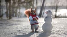 """Новогодние заставки рекламы """"Белки"""" (Первый Канал, 2016-2017) Winter Holidays, Christmas Holidays, Merry Christmas And Happy New Year, Garden Sculpture, Snowman, Cold, Funny, Outdoor Decor, Tv"""