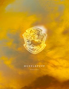 Which Hogwarts House Were You Almost Sorted Into: I got HufflePuff...which is strange...because, I am mostly hufflepuff with a bit of Ravenclaw...haha