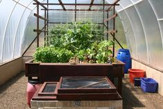 Aquaponics explanation and a beautiful system.
