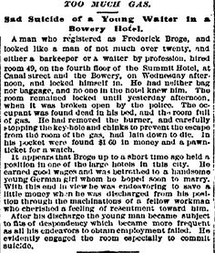 """Summit Hotel. """"Too Much Gas. Sad Suicide of a Young Walter in a Bowery Hotel.""""  November 19, 1880"""