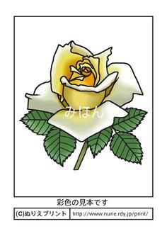 バラ6(彩色見本)/花の塗り絵/無料イラスト【ぬりえプリント】