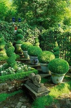 1000 Images About Evergreen Gardens On Pinterest