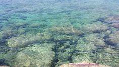 Un #mare cosi solo in #salento #weareinpuglia #gallipoli #estate2014