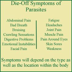 The die-off symptoms of parasites include weakness, fatigue, pain and emotional instabilities. The parasite die-off symptoms begin as soon as the parasites start to die off and generally last until… Holistic Remedies, Health Remedies, Natural Remedies, Gut Health, Health And Nutrition, Die Off Symptoms, Detox Symptoms, Parasite Cleanse, Body Detoxification
