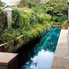 Un long couloir de nage entouré de verdure.