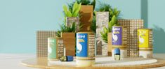OLyBird The Adaptogen Company - Chapter 1 on Packaging of the World - Creative Package Design Gallery