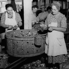 Oyster canning factory, Golden Meadow, probably 1940