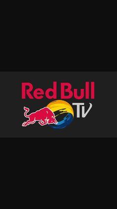 red bull stratos essay