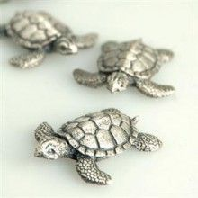 mini sea turtles!