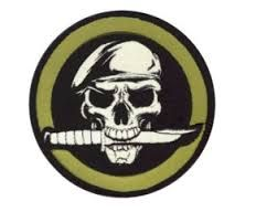 marine skull - Google Search