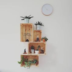 New home for our little green friends ? Crates On Wall, Wooden Crate Shelves, Diy Furniture Decor, Diy Home Decor, Room Decor, Ikea Boxes, Kitchen Wall Shelves, Student Room, Ikea Hack