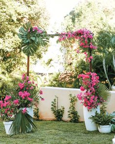 This couple wed in a Pacific Coast tropical town beneath an arch twined with bougainvillea and greenery from the nearby jungle.