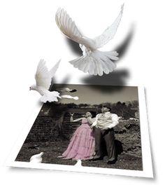 Doves escape from a dream to reality...  Ein romantisches Bild von Yvonne Wälle vom Fotostudio FOTOWELLE