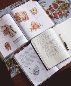way-to-study: Anatomy ❤