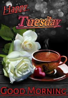 Happy Tuesday Greetings – Fit for Fun - CoffeePins Tuesday Quotes Good Morning, Happy Tuesday Quotes, Tuesday Humor, Good Morning Happy, Good Morning Coffee, Morning Greetings Quotes, Good Morning Picture, Morning Pictures, Morning Wish