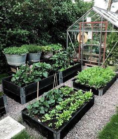 Best 52 Vegetable Garden Design Ideas for Green Living - Bepflanzung Backyard Vegetable Gardens, Veg Garden, Vegetable Garden Design, Garden Types, Garden Cottage, Garden Edging, Vegetables Garden, Potager Garden, Indoor Garden