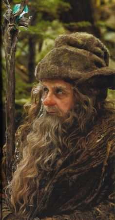 Radagast The Brown, part of the Istari order from Aman.  He was a close lover of things involving birds, beasts, and nature,  He resided on Rhogosbel in the Anduin vale,  He is  considered corrupted as he strayed from his mission and went native.