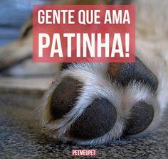 EU!!! ♀️♀️☺️❤️❤️❤️ #cachorro #gato #maedegato #maedecachorro #filhode4patas #filhote #petshop #petmeupet
