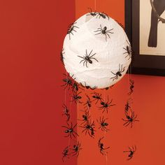 Spider Hatchlings ~ Super simple project - glue spiders on fishing line or clear string, put them over a lantern or lampshade for a creepy element
