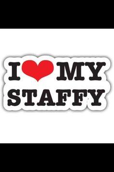 I looooove my staffies! xxx