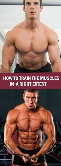 HOW TO TRAIN THE MUSCLES IN A RIGHT EXTENT #buildmuscle #trainmuscles #rightextent