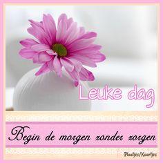 Goedemorgen - Fijne dag Good Night, Good Morning, Nighty Night, Buen Dia, Bonjour, Have A Good Night, Bom Dia, Buongiorno