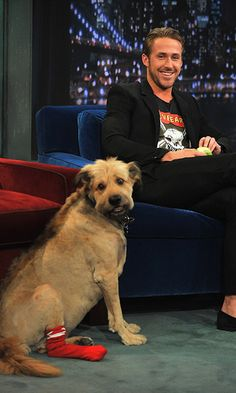 Ryan Gosling remembers the life of his beloved dog George | HELLO! Canada