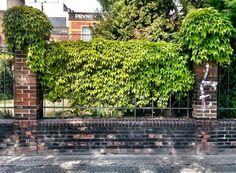 #holesovicenow #holesovice #citylife #city #fence #green #prague #praha #czech_world #czech #czechrepublic #instaczech #igraczech #igerscz