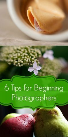6 Tips for Beginning Photographers