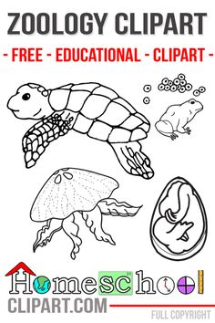 Animal Science Clipart