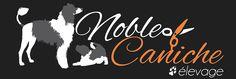 Vos éleveuses Company Logo, Poodles