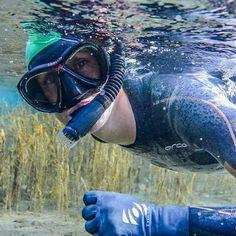 Swimming, Pets, Sneakers, Animals, Swim, Trainers, Animais, Animales, Animaux