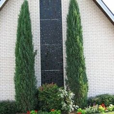 KAT Wholesale Outdoor – Kansas City's wholesale plants and hardgoods supply Stone Landscaping, Landscaping Near Me, Evergreen Trees, Trees And Shrubs, Natural Privacy Fences, Italian Cypress Trees, Wholesale Plants, Organic Gardening Magazine, Rustic Homes