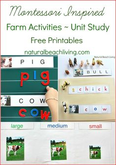 Montessori Farm Activities ~ Farm Theme Unit Study {Free Printables} from Natural Beach Living
