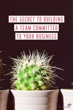 Think team meetings are a waste of time? Team meetings might just be your secret weapon to building a better team. Using Facebook For Business, How To Use Facebook, Growing Your Business, Creative Business, Business Tips, Online Business, Online Entrepreneur, Business Entrepreneur, Meet The Team