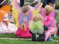 Fairy Friday