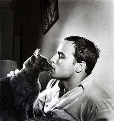 Marlon Brando and cat