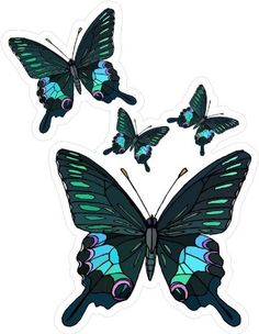 4 Blue & Black Butterflies - Etched Vinyl Stained Glass Film, Static Cling Window Decal Window Art in Vinyl Etchings http://www.amazon.com/dp/B005LASSHQ/ref=cm_sw_r_pi_dp_9tllub1W7AYRD