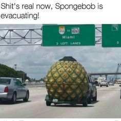 Spongebob meme aside.What the hell is going on here. 24 Funny Memes about Life that are so Hilarious Love Memes, Best Memes, Dankest Memes, Funnt Memes, Funny Spongebob Memes, Funny Jokes, Stupid Memes, Cartoon Memes, Pewdiepie