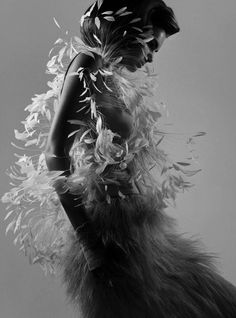 feathers! LOVE IT