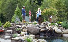 Water Gardens and Home Schooling, a Perfect Match - By Sue Ann DuBois, Chips Landscaping